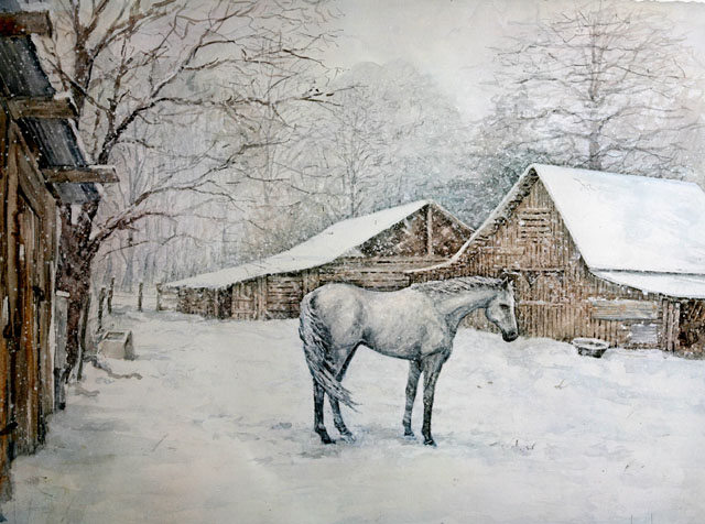 Print of a white horse in snow